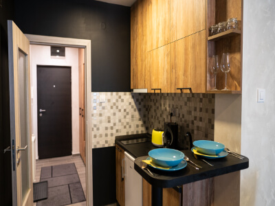 Exclusive apartments in Novi Sad kitchen
